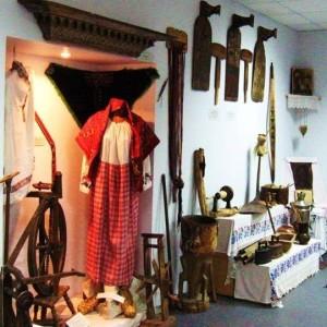 Музей истории московского района